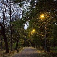 Вечерние огни. :: Senior Веселков Петр
