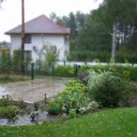 Autumn :: Анна Воробьева