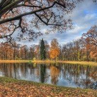 В парке :: Сергей Григорьев