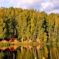 Тихая осень :: Наталья