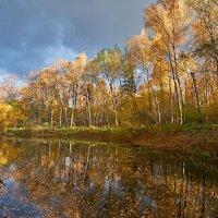 Осенний пруд :: Alex