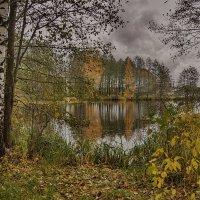 Прозрачная осень :: Владимир Макаров
