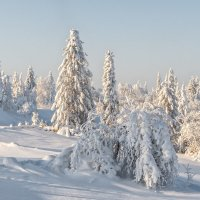 зима в квадрате :: дмитрий посохин