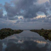 Река Александр. Израиль :: Владимир Сарычев