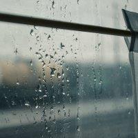 Дождик :: Elt