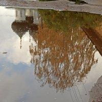 Осень в зеркале воды :: Наталья Кузнецова
