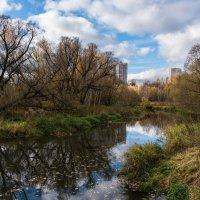 Река Сходня. :: Владимир Безбородов