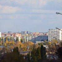 Левый берег. Воронеж - город в котором живу... :: Михаил Болдырев