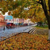 Осень :: Валерий Толмачев
