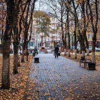 Осень в Ростове. :: Александр Гапоненко