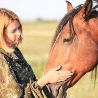 Обожаю лошадей! :: Галинка