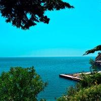 Чудесный вид на Чёрное море :: Наталья Базанова
