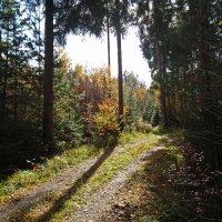 Пусть всегда будет солнце ... :: Владимир Икомацких