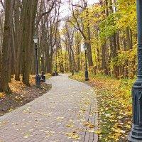 По дороге в осень :: Александр Запылёнов