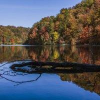 Осеннее озеро :: Сергей Дабаев