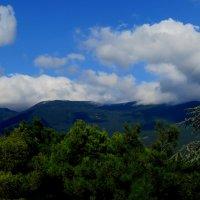 А горы уходят под самые тучи :: Tatyana