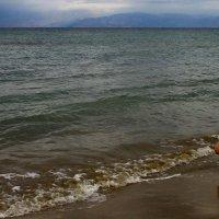 Малыш и море   Греция :: олег свирский