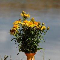 Букетик цветов полевых. :: nadyasilyuk Вознюк