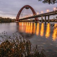 Живописный мост. Москва :: Борис Гольдберг