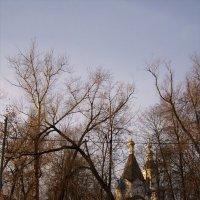 Успенская церковь в Вешняках :: Анна Воробьева