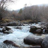 ущелье Сарыайгыр, Казахстан ЮКО :: Бахытжан