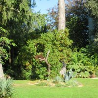 Ботанический Сад В Шербуре :: Natalia Harries