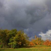 Перед дождем :: оксана косатенко