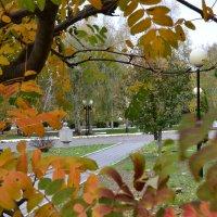 Осень. :: Анастасия Фомина
