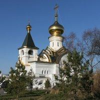 Храм Преподобного Серафима Саровского, г.Хабаровск :: Оксана