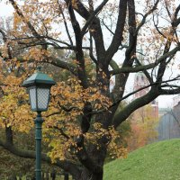 Осень в Александровском саду :: Александр Матюхин