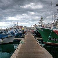 Порт Playa de Las Teresitas 2 :: Андрей Бондаренко