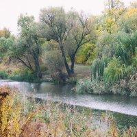 Река и дождь :: Ирина Сивовол