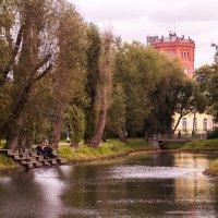 Таврический сад. Санкт-Петербург :: Елена Кириллова