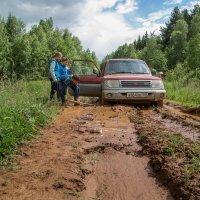 Не доехали... :: Sergey Apinis