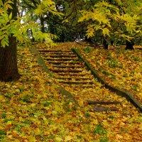 Лестница в Осень :: Сергей Карачин