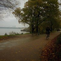 Дождливое утро :: Nina Yudicheva