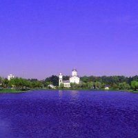Городское озеро :: Виталий