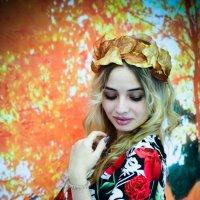 Осень :: Дарья Левина
