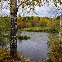 Река осенью. :: Наталья