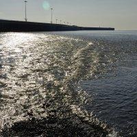 Река и море :: Светлана Винокурова