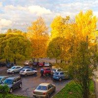 Осень рыжая подружка, просто утро во дворе... :: Алексей Сопельняк