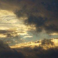 Быстробегущие по небу черные облака. Будет дождь :: татьяна