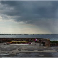 Прогулочка после дождя. :: Anatol Livtsov