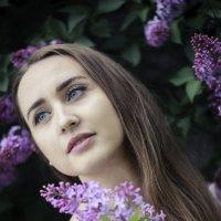 Света :: Виктор Богданов