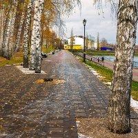 Гуляла осень в нашем парке :: Любовь Потеряхина