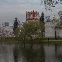 Тонкий лед у Новодевичьего.. :: Александра