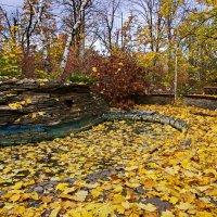 """""""Листья жёлтые,скажите,что вам снится..."""" :: Андрей K."""