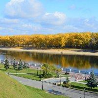 Золотая осень в Гомельском парке :: Юлия Кузнецова