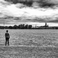 Вид на Петропавловскую крепость :: Оксана Лада