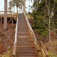 Деревянная лестница :: Aнна Зарубина